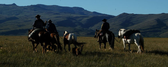 Cattle drive vacation in Patagonia